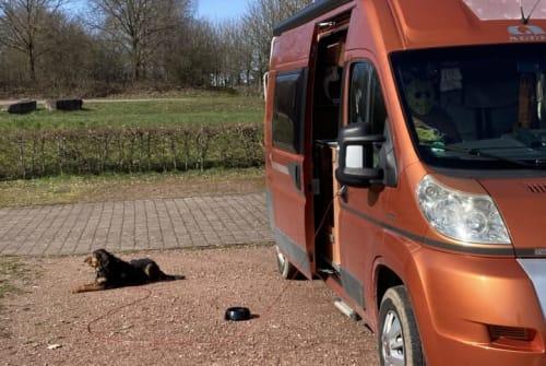 Wohnmobil mieten in Wörth am Rhein von privat | Adria Adria Twin SP