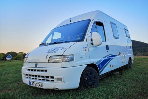 Wohnmobil mieten in Heilbad Heiligenstadt von privat | Fiat Ducato Cathy