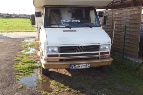 Wohnmobil mieten in Tribsees von privat | Fiat Lotta 2