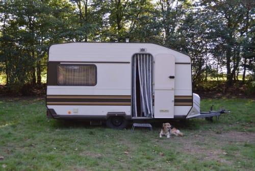 Wohnmobil mieten in Wanderup von privat | Knaus Kurt
