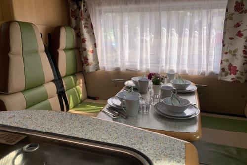 Wohnmobil mieten in Neumünster von privat   Fiat Ducato Sternrouter