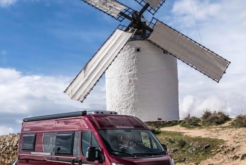 Wohnmobil mieten in Bottrop von privat | Globecar Horsti