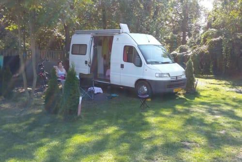 Wohnmobil mieten in De Zilk von privat | Peugot De Bus