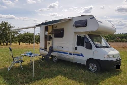Wohnmobil mieten in Hochheim am Main von privat | Fiat Heimathafen