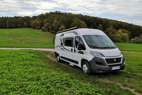 Wohnmobil mieten in Korntal-Münchingen von privat | Roller Team Deschalini
