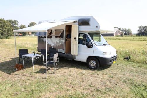 Wohnmobil mieten in Hollandsche Rading von privat | Hymer Knusse Hymer