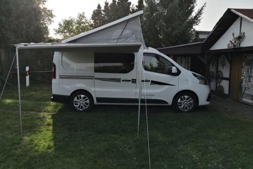Wohnmobil mieten in Rostock von privat | Karmann Karmann 2-4