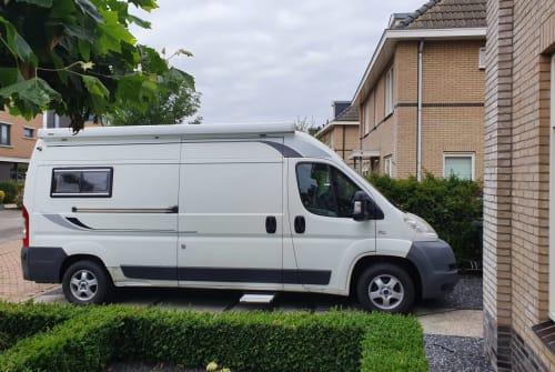 Wohnmobil mieten in Hoogeveen von privat | Fiat White Label