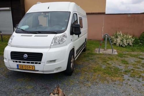 Wohnmobil mieten in Almere von privat | Fiat Duke