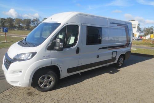 Wohnmobil mieten in Neustadt von privat | Weinsberg Cara Bus 600 MQ