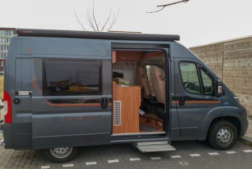 Wohnmobil mieten in Delft von privat | Fiat Ducato De Buscamper