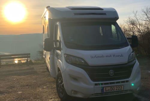 Wohnmobil mieten in Leipzig von privat | Hobby Hunde-Mobil