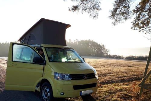 Wohnmobil mieten in Freiburg im Breisgau von privat | VW VW California