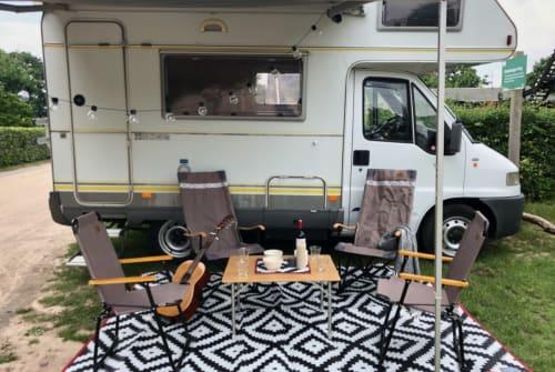 Wohnmobil mieten in Ede von privat | Fiat Miss Sunshine