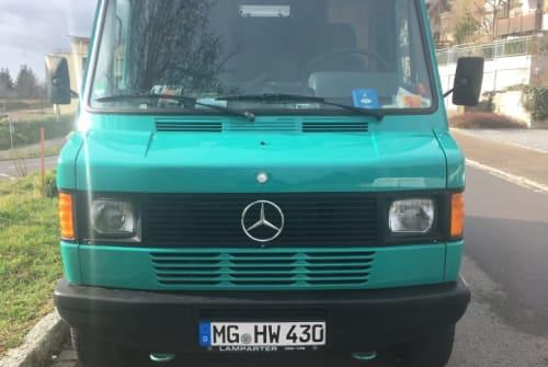 Wohnmobil mieten in Efringen-Kirchen von privat | Mercedes-Benz  Erich