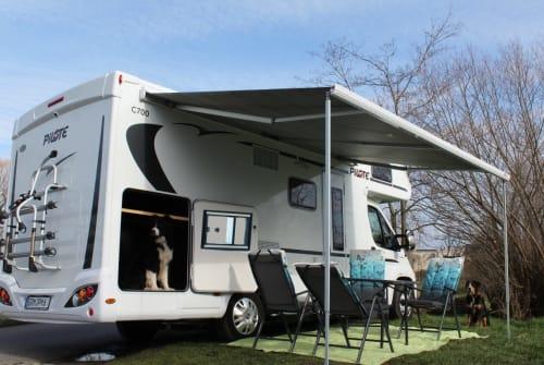 Wohnmobil mieten in Borsdorf von privat | Fiat 6PfotenMobil