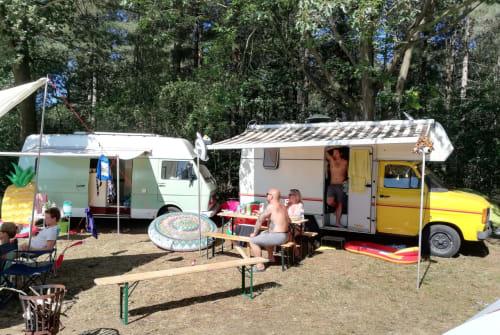 Wohnmobil mieten in Tilburg von privat | Ford Harrison Ford