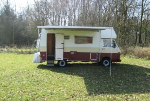 Wohnmobil mieten in Vierakker von privat | Volkswagen Saskia's camper