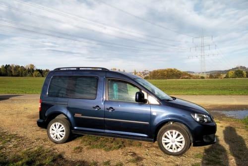 Wohnmobil mieten in Heuchelheim von privat | VW Freddy Roncalli