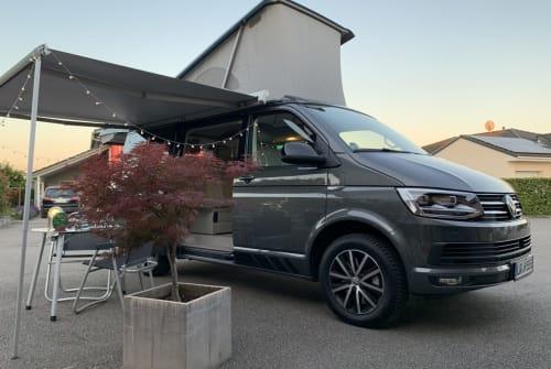 Wohnmobil mieten in Schwanau von privat | VW Leeven's Bus