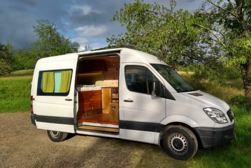 Wohnmobil mieten in Freiburg im Breisgau von privat   Mercedes Sterni