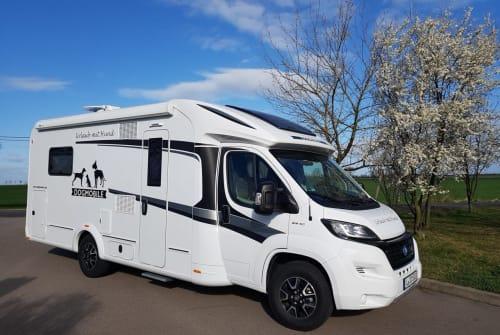 Wohnmobil mieten in Leipzig von privat | Knaus SUN TI  DOGMOBIL 5