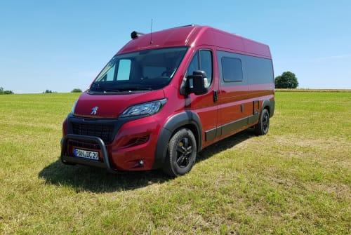 Wohnmobil mieten in Triftern von privat | Tourne Lagertha