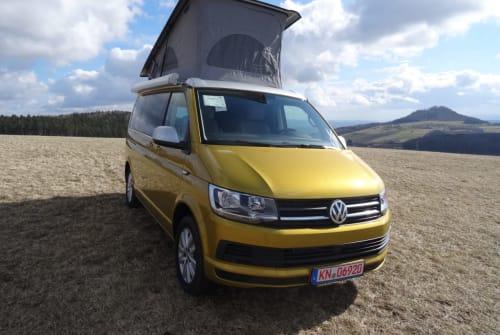 Wohnmobil mieten in Tengen von privat | Volkswagen VW T6 Californi