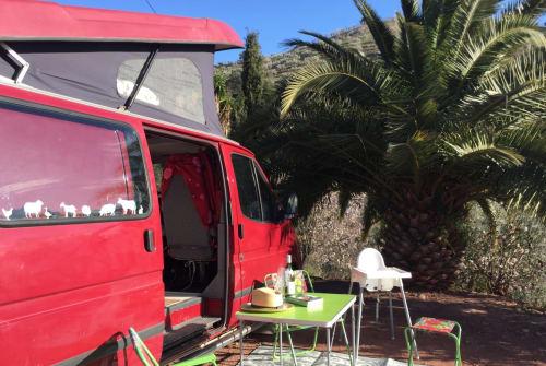 Wohnmobil mieten in Málaga von privat | Ford Ted (S)