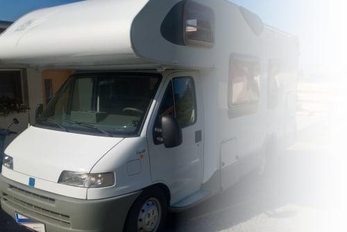 Wohnmobil mieten in Wolfurt von privat | FIAT KochMobil2