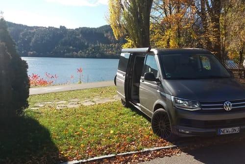 Wohnmobil mieten in Neustadt an der Waldnaab von privat | Volkswagen  California Ocean Edition 204PS DSG