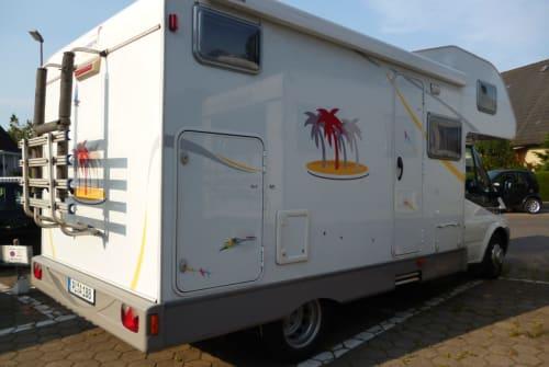 Wohnmobil mieten in Uetersen von privat | Sunlight Sunlight A63