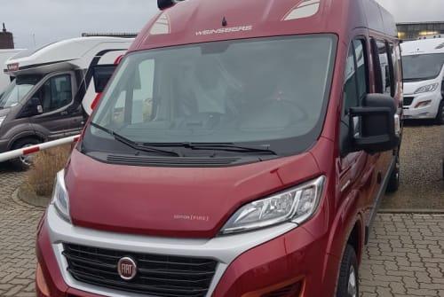 Wohnmobil mieten in Fehmarn von privat | Weinsberg Maja