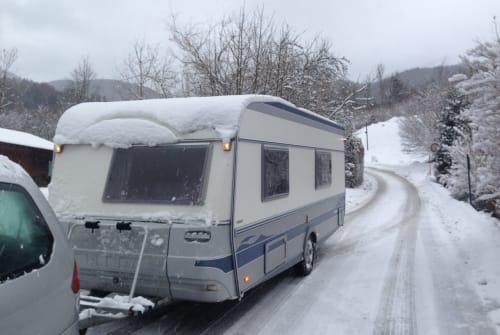 Wohnmobil mieten in Lingen von privat | Fendt Akki