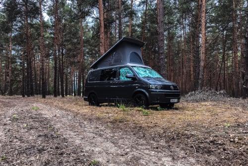 Wohnmobil mieten in Salzwedel von privat | Volkswagen  VANactive 101
