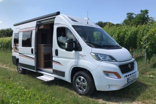 Wohnmobil mieten in Schwaigern von privat | Fiat / Weinsberg CaraBus Fire