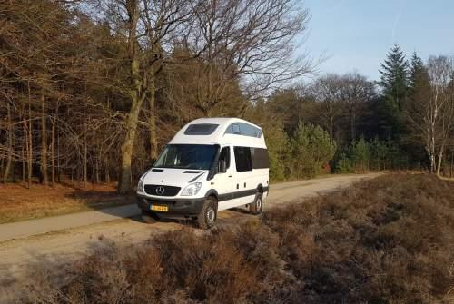 Wohnmobil mieten in Wapenveld von privat | Mercedes  Sprinter